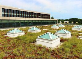 This green roof is an example of a green stormwater infrastructure at corporate headquarters of Johnson Controls, Inc. in Glendale, Wisconsin.