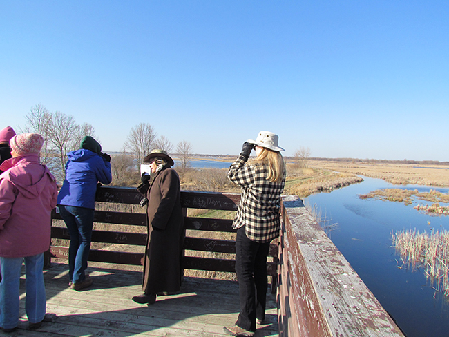 Adults touring Nayanquing Point State Wildlife Area