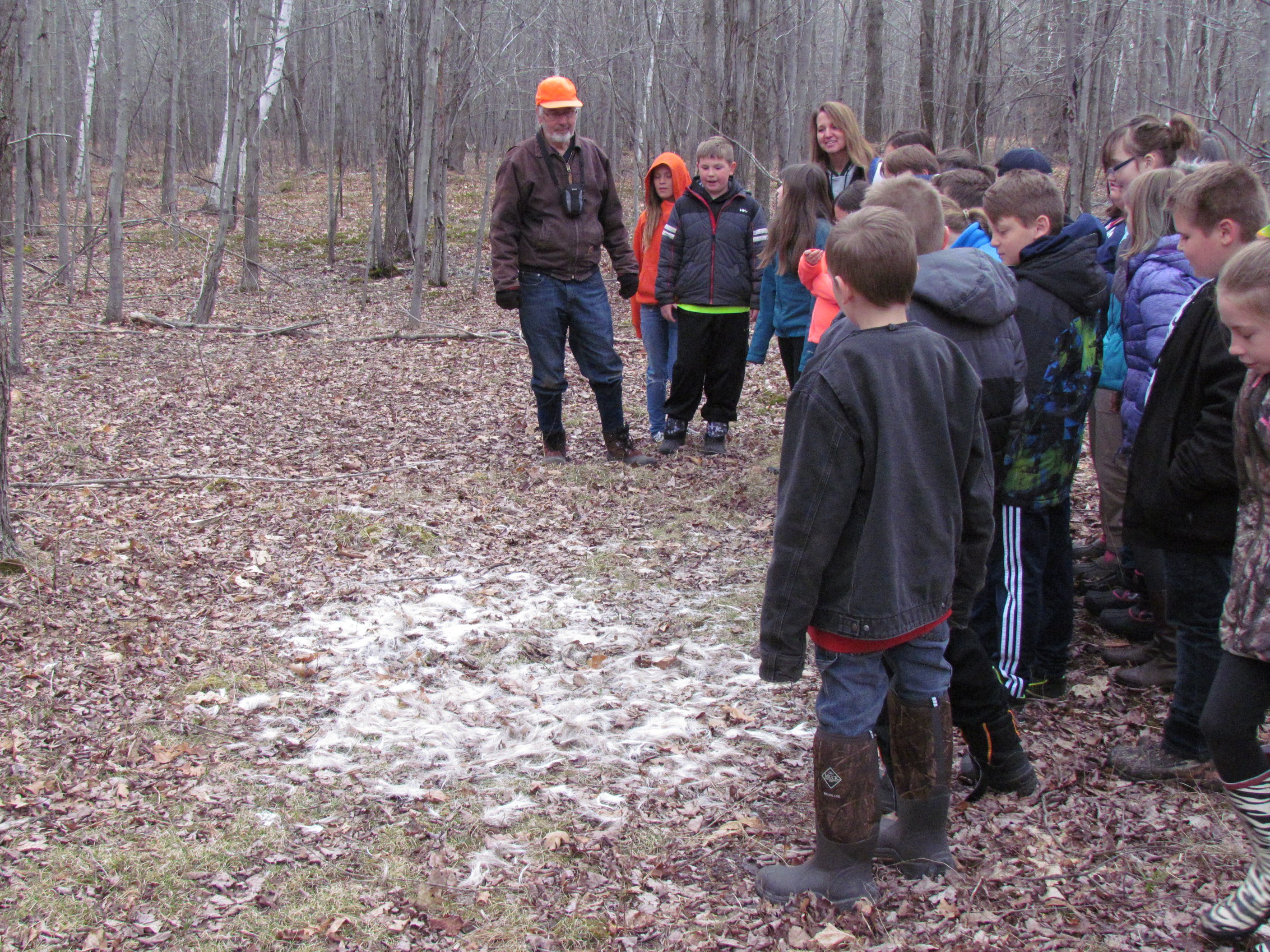 Linwood 4th graders viewing remains of deer in the woods