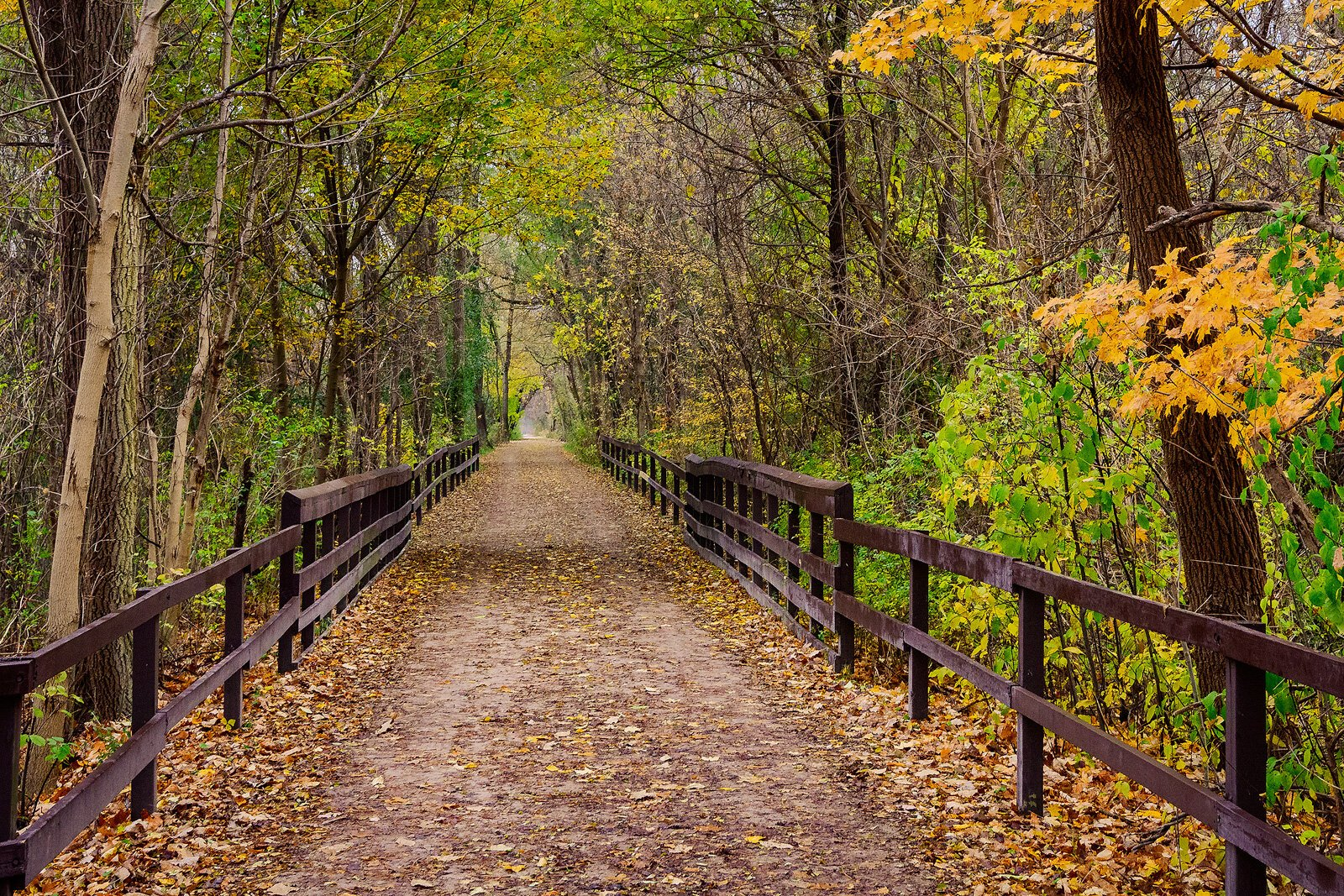 Paint Creek Trail, Orion Township. Photo by Doug Coombe