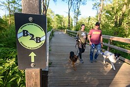 Dogwalkers enjoy a stroll on a section of the B2B Trail in Dexter.