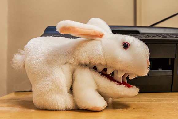 The killer rabbit from Monty Python and the Holy Grail at the Olark offices