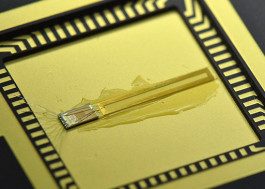 Implantable Radio Device