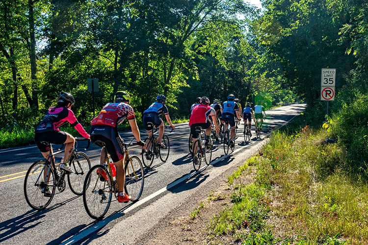Cyclists on Huron River Drive