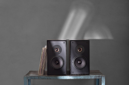 Leon Timbre MT bookshelf speakers.