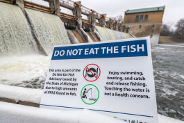 A Do Not Eat Fish Advisory sign at The Barton Dam