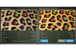 A screenshot of Microsoft's Wild Me software for endangered species identification.