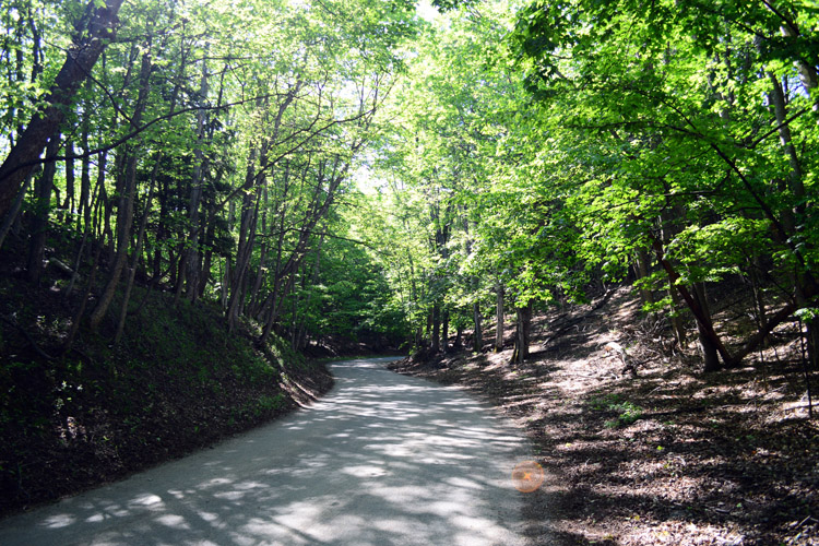 In Michigan, forests often surround the trails.