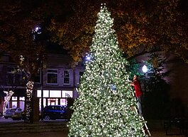 City officials worked with the crowdsourcing platform Patronicity to purchase and install a 20-foot Christmas tree in a downtown Holland park. (City of Holland)