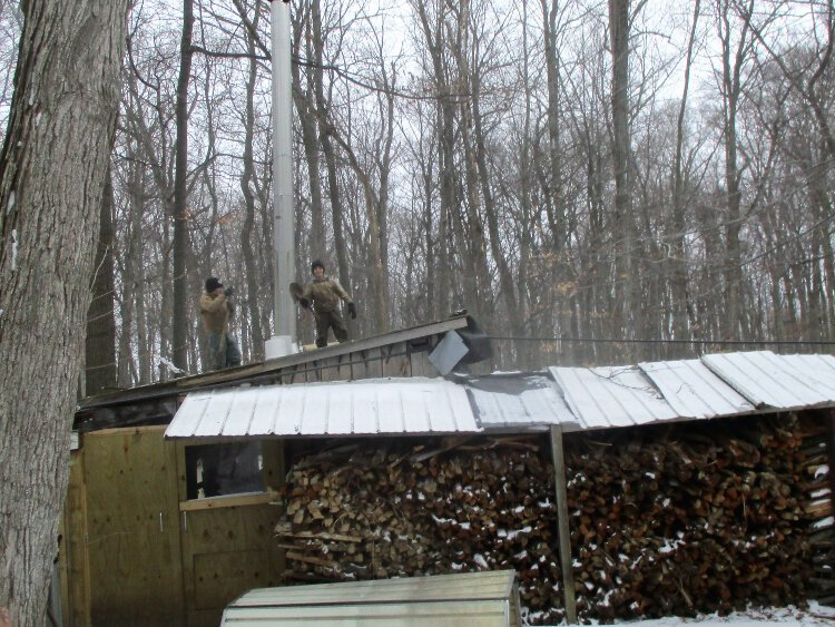 Six cords of wood are needed annually to cook the Stoller's sap collection down to syrup.