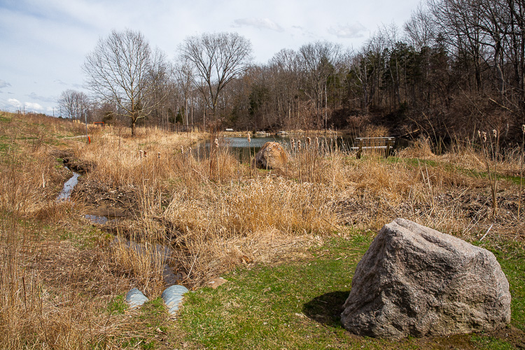Green infrastructure in Rochester Hills. Photo by David Lewinski.