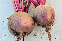 hamtown-farms-beet-list.jpg
