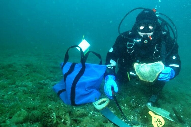 A NOF diver engages in underwater research.