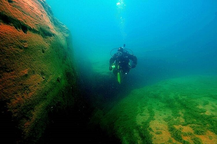 An NOF diver takes a scenic swim.
