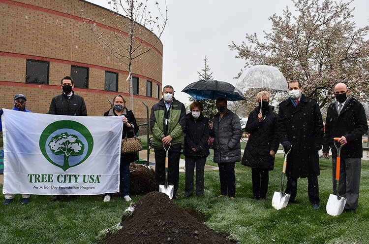 Department of Public Works Director Michael Moore joined Mayor Taylor and city council members this week in planting an Autumn Blaze Maple tree adjacent to the city's library in celebration of Arbor Day.