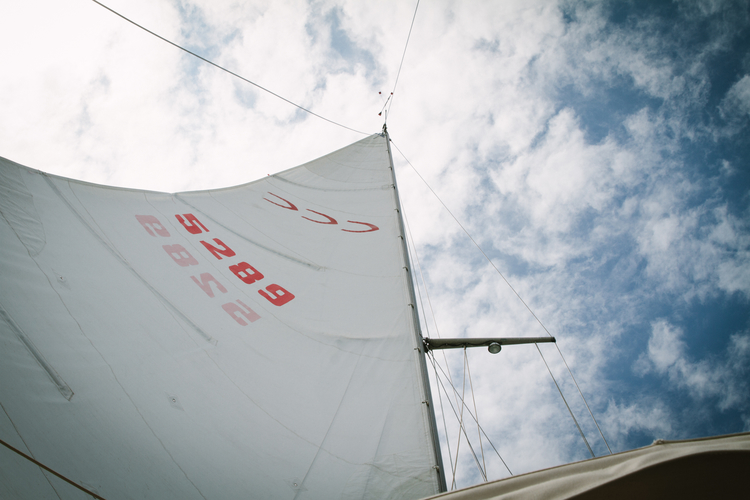 The mainsail on Northern Light during a sail in Tawas Bay.