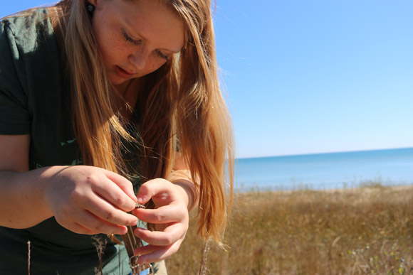 Students take on stewardship role at Negwegon State Park