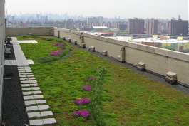 Green roofs are a sustainable part of planning.