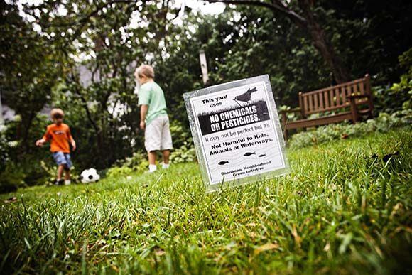 In a neighborhood of too-perfect chemical lawns, one eco