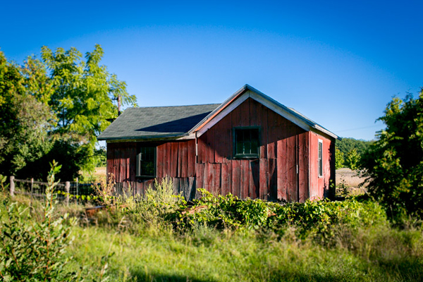 An old building on Campbell-DeYoung Farm. / Andrew Williamson
