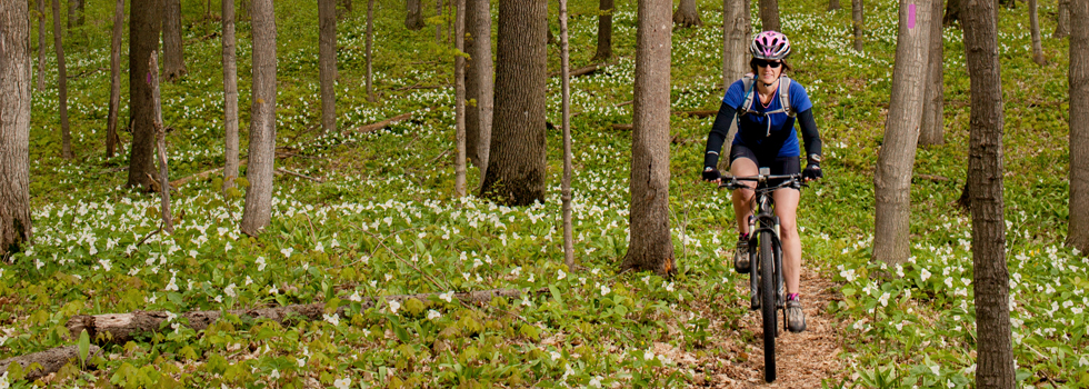Bike riding Arcadia Dunes Mt. Biking Trail with trillium in bloom. / Elizabeth Price