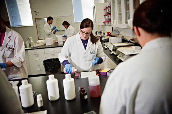 Sarah Lankford, a Lab Technician at Forensic Fluids,  prepares a batch of samples for testing.
