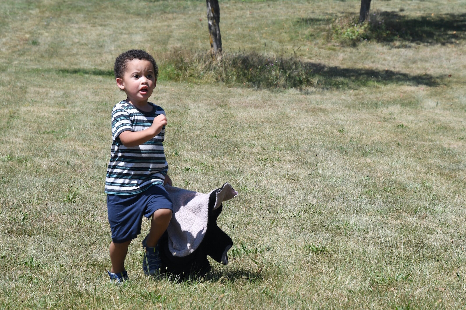 Greyson Hampton, 3, runs down a hill at Leila Arboretum.