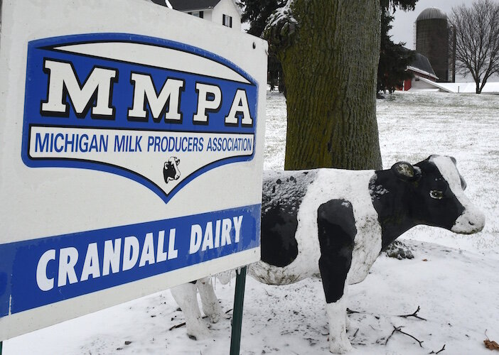The front sign of the Crandall Farm on North Avenue let's people know dairy cattle are raised here.