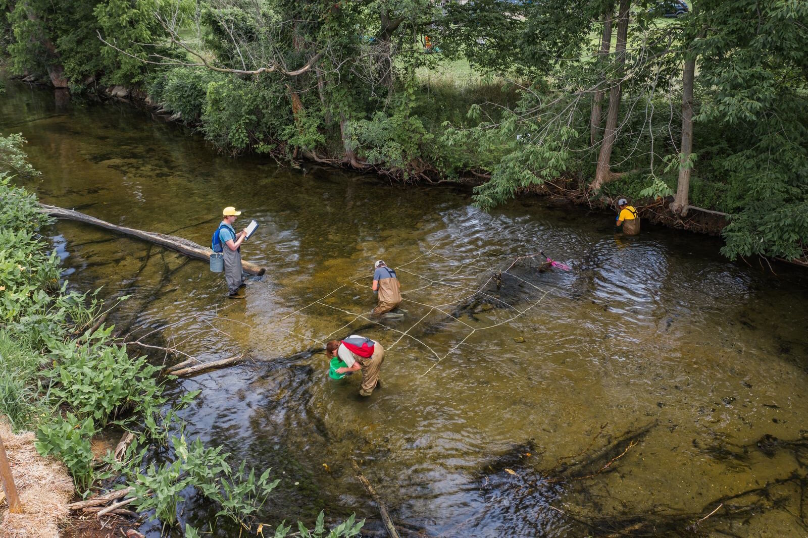 Researchers study the wildlife in Porage Creek as they work on the development of The Mill at Vicksburg
