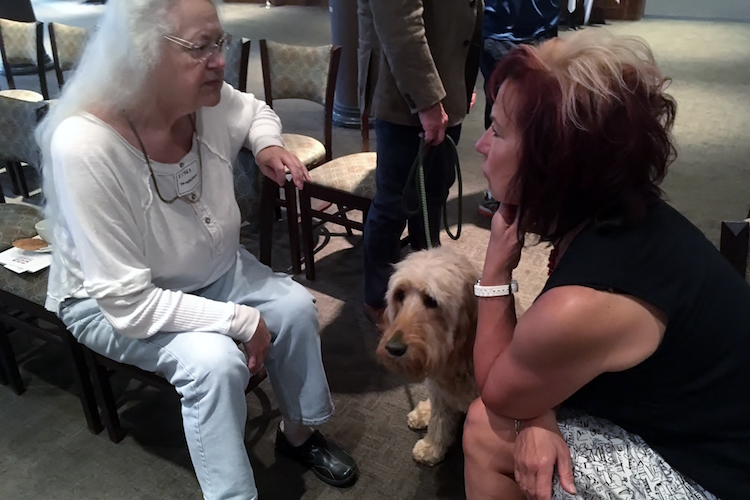 A furry guest attends the Kalamazoo Humane Society announcement
