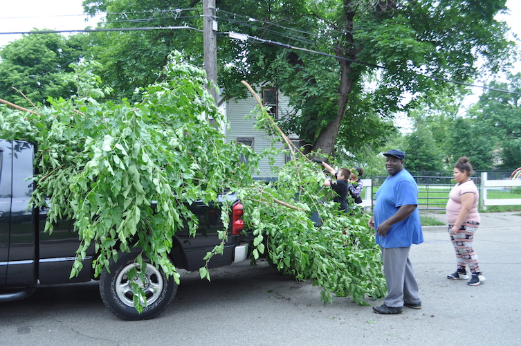 Taking out trees from Ada Street.