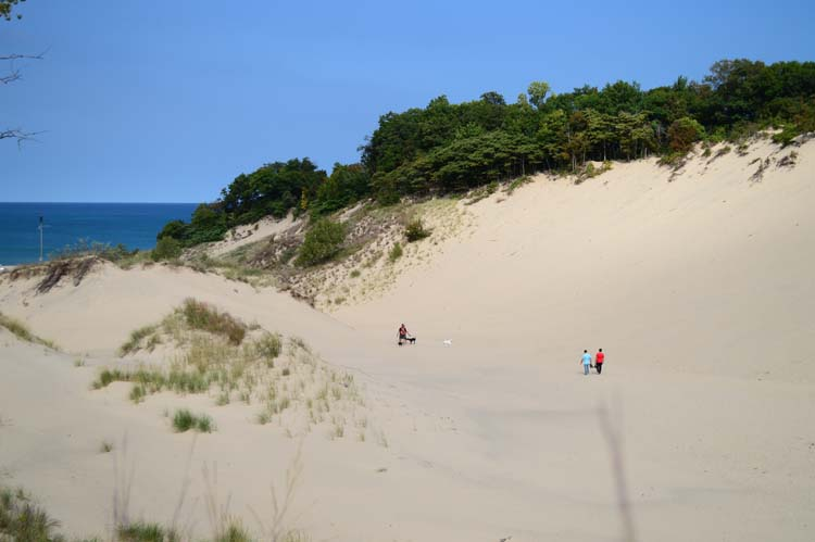 Michigan Dune Alliance Helps Protect