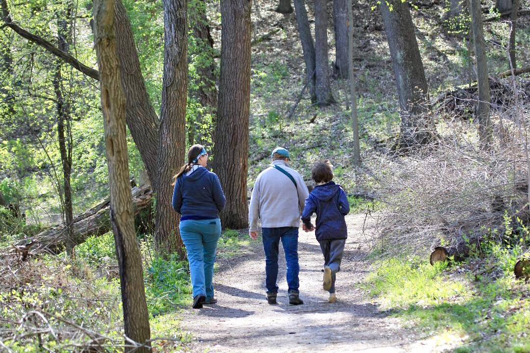 Erin Fuller takes a walk through the Kleinstuck Preserve with her husband Nate and their son Theo.
