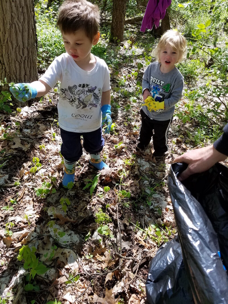Youngsters pull garlic at a Southwest Michigan Land Conservancy preserve.