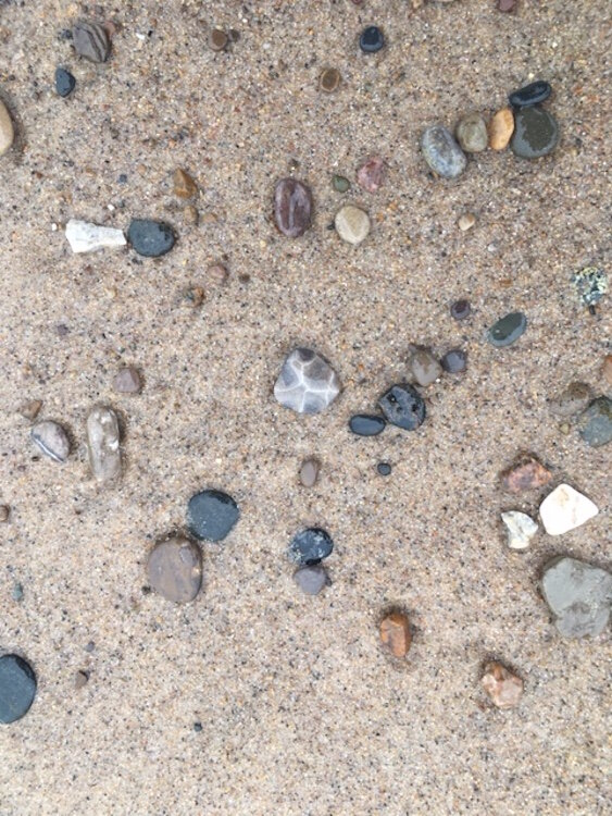 Rock hunting is a favorite pastime of beachgoers headed to Lake Michigan.