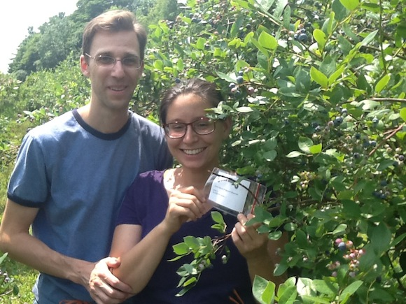 Blueberry bush renters