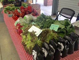 Sprout Grocery + Kitchen is open Thursday and Saturdays from 11 a.m. to 6 p.m.