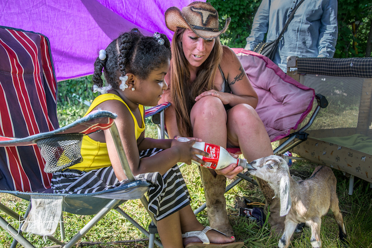 Feeding the goats is always a hit at Harvest Fest in the Edison neighborhood. Photo by Fran Dwight