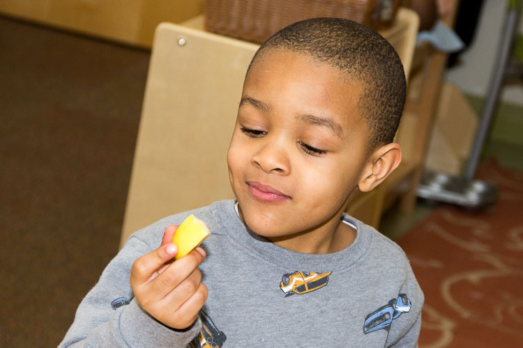Studying an apple slice at the YWCA. Photo by Susan Andress