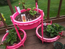 Gro-Hoop makes gardening easier.