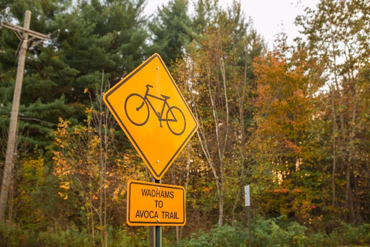 Catch the changing leaves on a leisurely walk or ride along the Wadhams to Avoca Trail