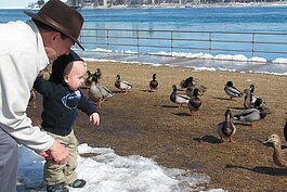 A young birdwatcher meets some ducks in St. Clair County.
