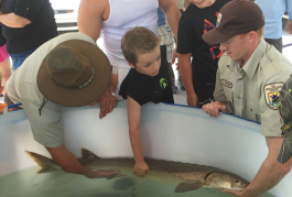 Children check out sturgeon during the Blue Water Sturgeon Festival.