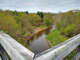 The Wadhams to Avoca trail offers a great view from the Mill Creek Trestle
